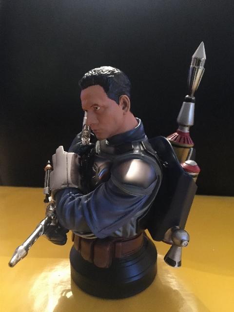 Vente de Dark Vador : buste GG SW, Hot Toys, PF etc... 15175262551935154910