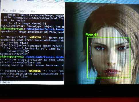 Facial Detection and recognition - Raspberry Pi Forums