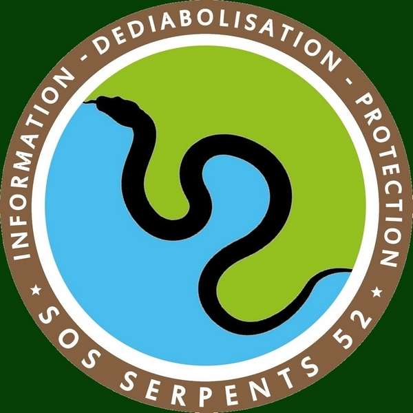 S.O.S Serpents 52 1522789055948215834