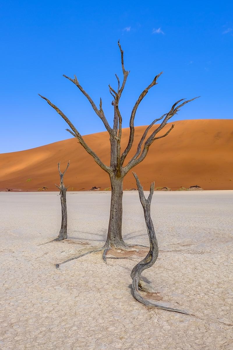 Sossusvlei ... les dunes de Namibie 15265057041386292515
