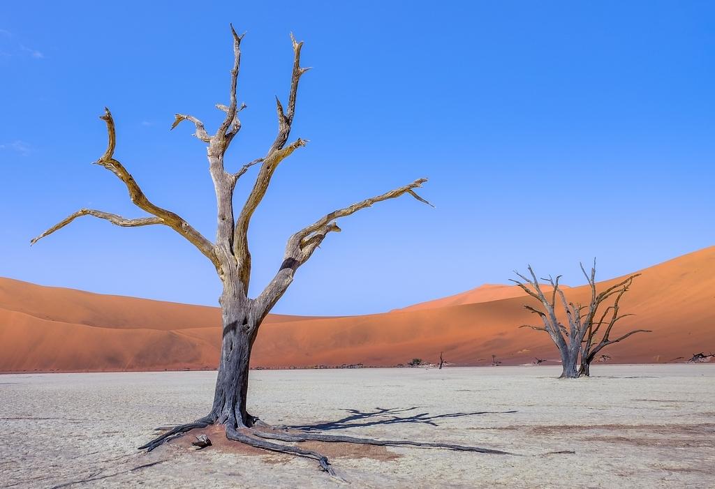 Sossusvlei ... les dunes de Namibie 1526593226757451136
